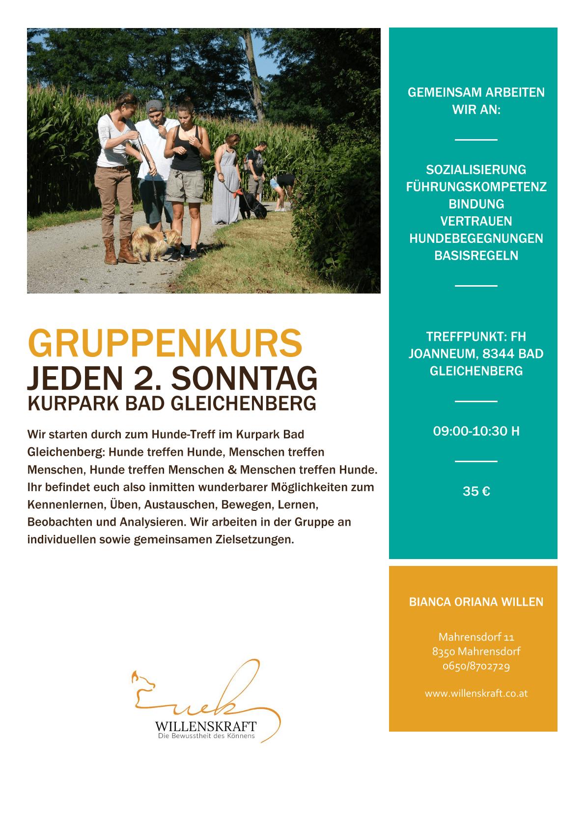 Gruppenkurs Hundeschule Graz