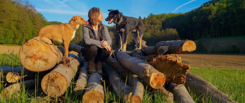 online Hundeschule im Freien