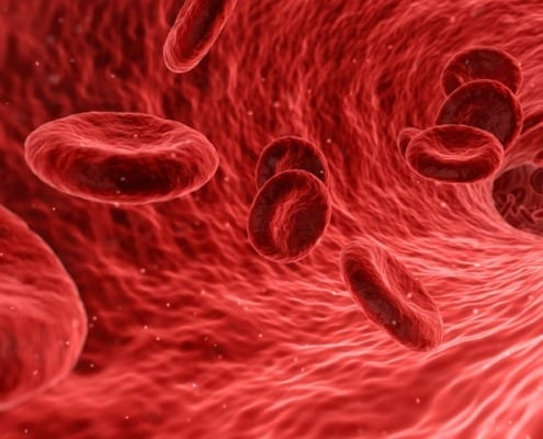 Blutkörperchen
