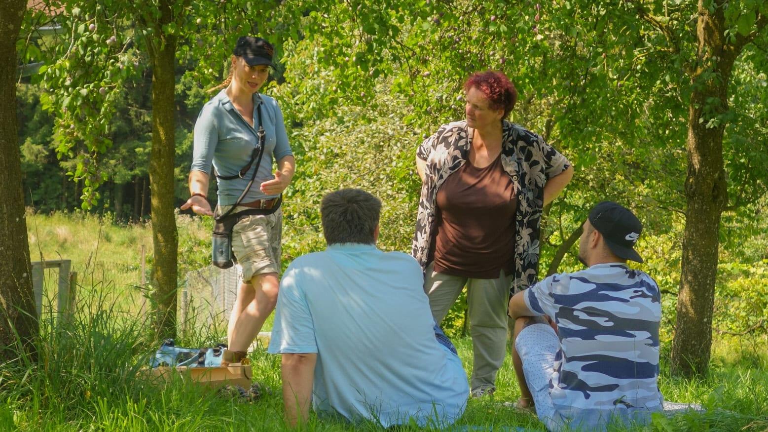 Hundetrainer Steiermark, Gruppenkurs