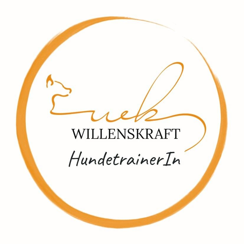 Willenskraft Hundertrainerin